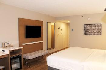 Room, 1 King Bed, Non Smoking (NonSmoking)