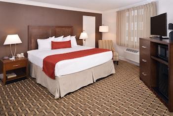 Standard Room, 1 King Bed, Refrigerator & Microwave, Corner
