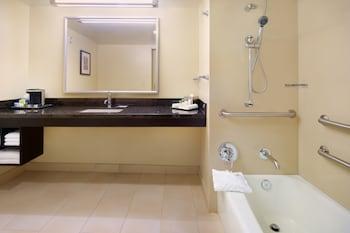 Room, Accessible, Bathtub