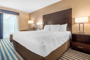 Room, 1 King Bed, Non Smoking (Main Floor)