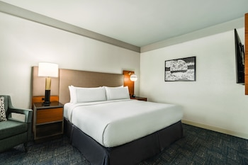 Suite, 1 King Bed, Accessible (Roll-In Shower)