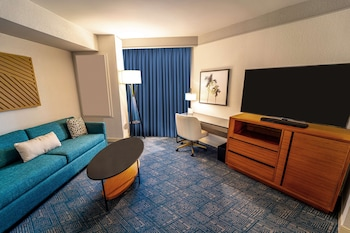 Suite, 1 King Bed, Accessible, Patio (Roll-In Shower)