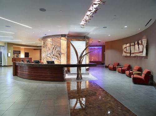 The Venetian Resort Las Vegas image 35