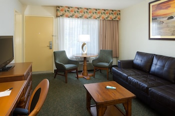 Suite, 1 Queen Bed with Sofa bed, Non Smoking, Refrigerator (with Sofabed)