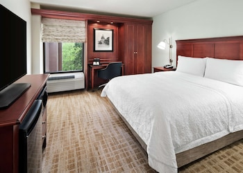 Room, 1 Queen Bed (Roll-In Shower, Mobility & Hearing)