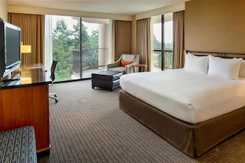 Standard Room, 1 King Bed, Accessible (RI Shower)
