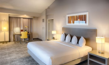 Junior Suite, 1 King Bed, Kitchenette, Mountain View