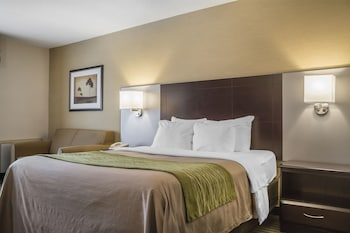 Comfort Inn Chatham - Guestroom  - #0
