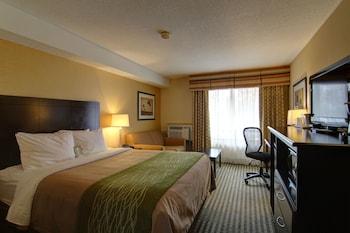 Comfort Inn Chatham - Guestroom  - #0