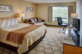 Comfort Care, Standard Room, 1 Queen Bed with Sofa bed, Non Smoking