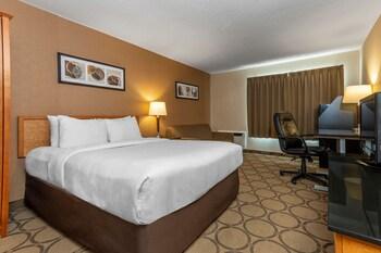 Standard Room, 1 Queen Bed, Non Smoking, Not Pet Friendly