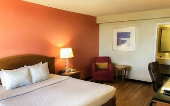 Standard Room, 1 King Bed, Non Smoking, Oceanside