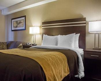 Comfort Care, Standard Room, 1 Queen Bed, Non Smoking