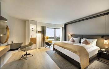 杜塞道夫 - 諾伊斯皇冠假日飯店 Crowne Plaza Düsseldorf-Neuss