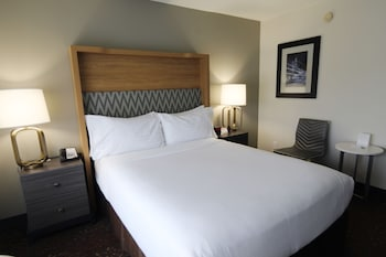 Room, 1 Queen Bed, Accessible, Non Smoking (Hearing, Roll-In Shower)