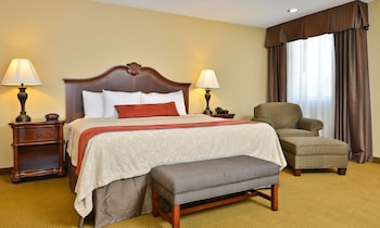 Standard Room, 1 King Bed, Refrigerator & Microwave, Pool View (2nd Floor;with Sofabed)