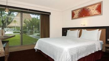 Holiday Inn San Luis Potosi