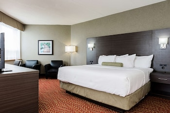 Standard Room, 1 King Bed, Refrigerator, View (Oversized Room)