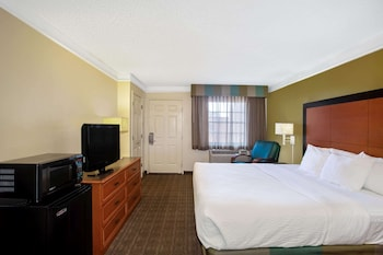 Suite (1 King Bed)