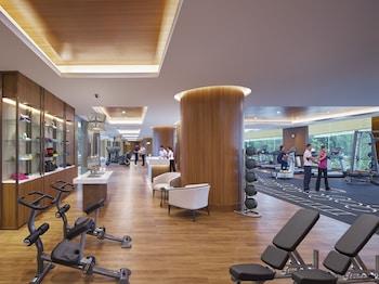 Makati Shangri-La Gym