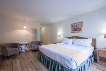 Executive Single Room, 1 King Bed, Kitchen