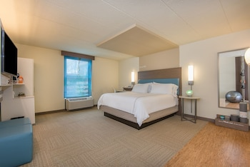 Room, 1 King Bed (WELLNESS, Glass Enclosed Shower)