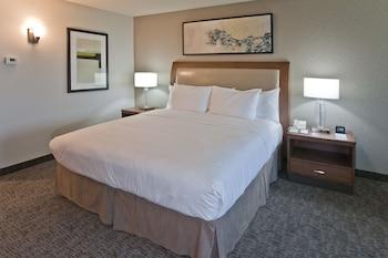 Room, 1 King Bed (Larger Room)
