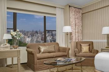 Executive Studio Suite, 1 King Bed, Park View