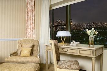 Executive Tek Büyük Yataklı Oda, Şehir Manzaralı