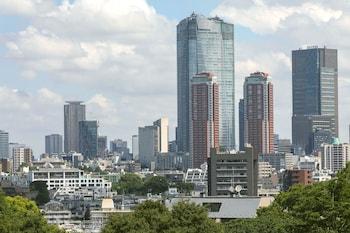 SHERATON MIYAKO HOTEL TOKYO View from Property