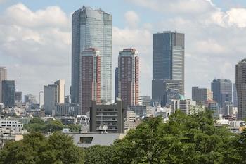 SHERATON MIYAKO HOTEL TOKYO City View