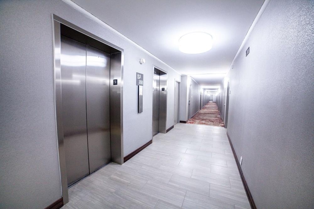 Hotel Amenity
