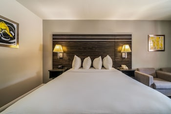Standard Room, 1 Queen Bed, Accessible, Bathtub