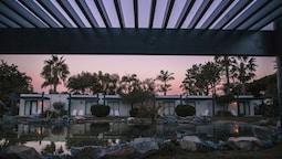 Premium Oda, 2 Büyük Boy Yatak, Balkon/veranda (garden)