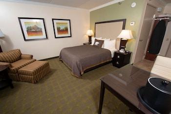 Standard Oda, 1 Büyük (queen) Boy Yatak, Engellilere Uygun, Buzdolabı Ve Mikrodalga