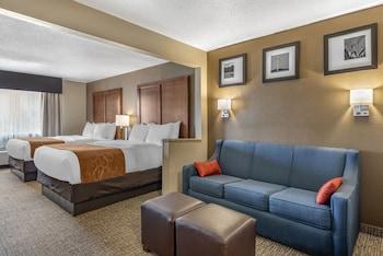 特雷霍特大學區凱富全套房飯店 Comfort Suites Terre Haute University Area