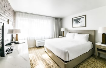 Room, 1 King Bed, Accessible (Roll In Shower)