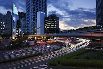 아카사카 엑셀 호텔 도큐