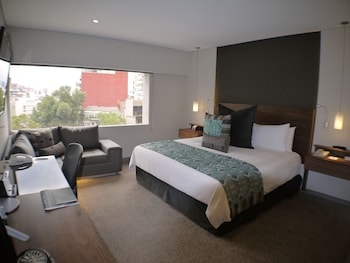 Room, 1 King Bed, View (Polanco View)