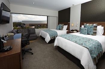 Club Room, View (CHAPULTEPEC VIEW)