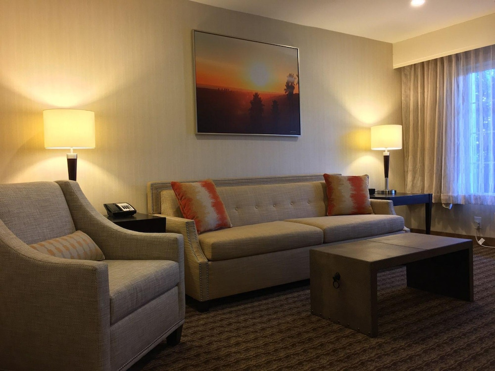 Suite : Suite, 1 King Bed with Sofa bed, Non Smoking, Refrigerator & Microwave (wit 31 of 146