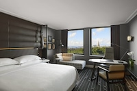 Room, 1 King Bed, Park View (Hyde Park View)