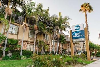 貝斯特韋斯特棕櫚樹花園旅館 Best Western Palm Garden Inn