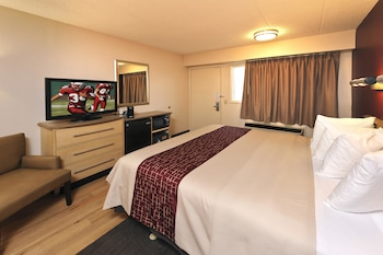 Standard Room, 1 King Bed, Accessible (Roll-in Shower, Smoke-Free)