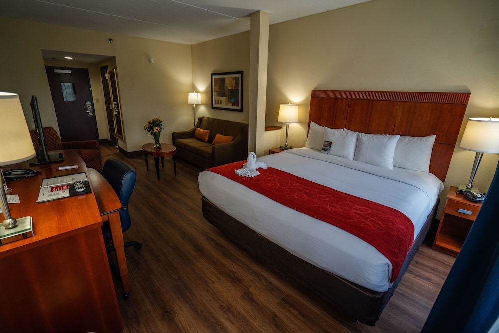 Suite, 1 King Bed with Sofa bed, Accessible, Non Smoking (Pet Friendly)
