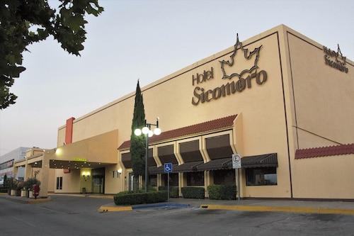 . Hotel Sicomoro