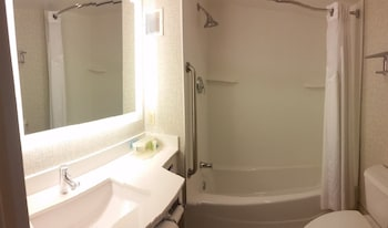 Holiday Inn Express Albany Downtown - Bathroom  - #0