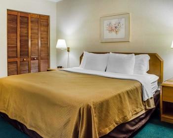Econo Lodge Mifflintown - Guestroom  - #0