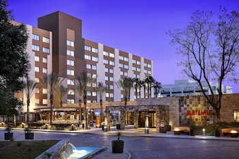 Hotel - Los Angeles Marriott Burbank Airport