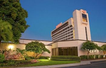 坦帕機場西岸希爾頓飯店 Hilton Tampa Airport Westshore